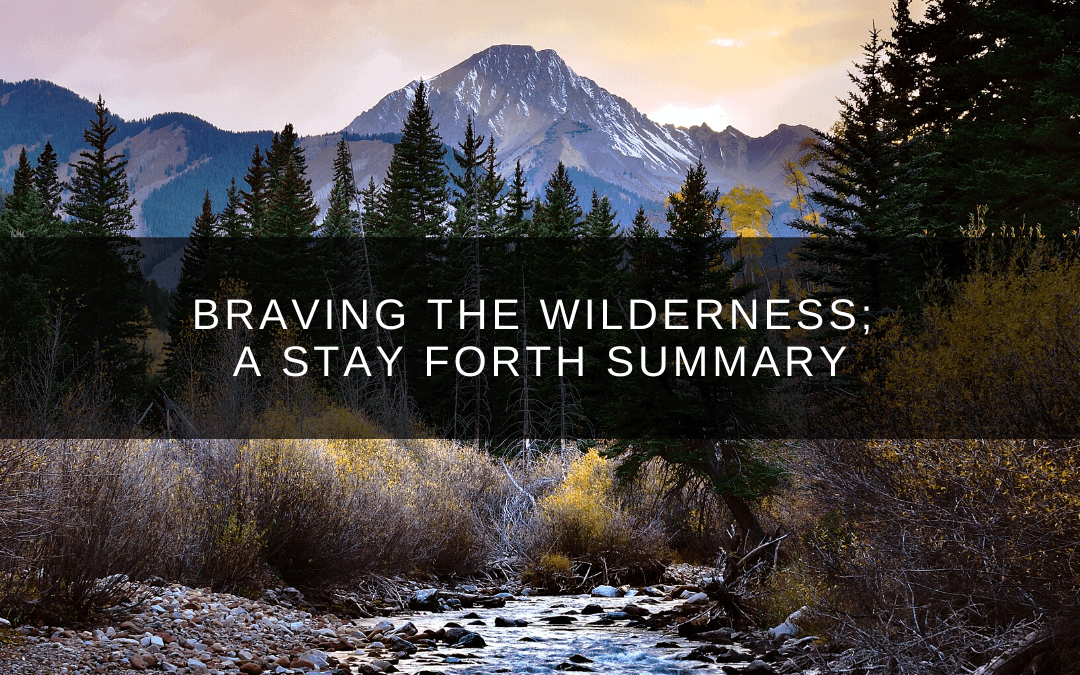 Braving the Wilderness; A Stay ForthSummary